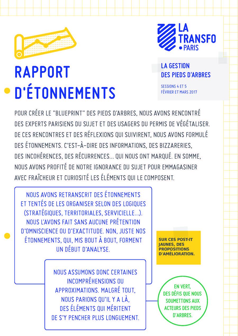 rapport etonnements - Pieds d'arbres 1